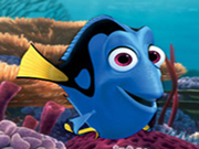 Finding Dory-Hidden Numbers
