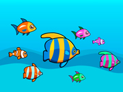 Fish Pair Linking