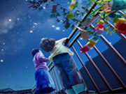 Hidden Stars-Night Sky