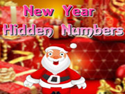 New Year Hidden Numbers