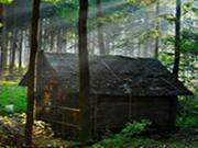 Old House-Hidden Targets