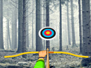 Snow Forest-Hidden Targets