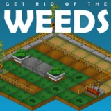 Get Rid of the Weeds