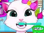 Angela Cat Clean Teeth
