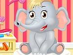 Baby Elephant Salon