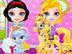 Baby Pets Beauty Pageant 2