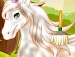 Horse Grooming Salon