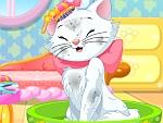 Kitty Princess Hair Care