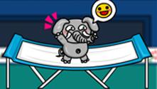 Animal Olympics Trampoline
