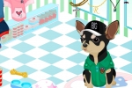 Animal Sports Fan Dress Up