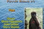 Ape Puzzle Mania