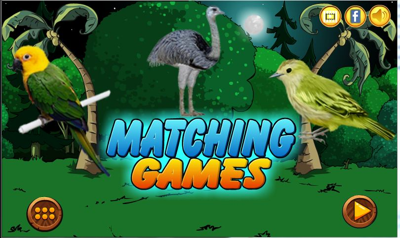Birds Matching Games