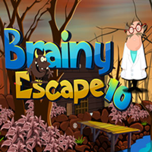 Brainy escape 10