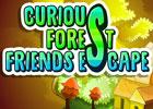 Curious Forest Friends Escape