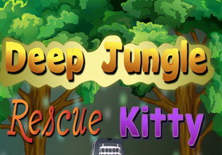 Deep Jungle Rescue Kitty