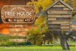 Design Your Own Tree House Scene