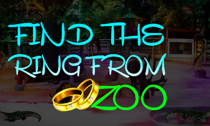 Find The Ring From Zoo