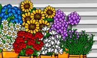 Flower Shopkeeper 2