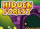 Hidden Forest Escape