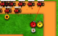 Insects Tower Defense