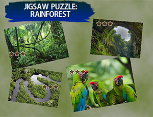 Jigsaw Puzzle Rain Forest