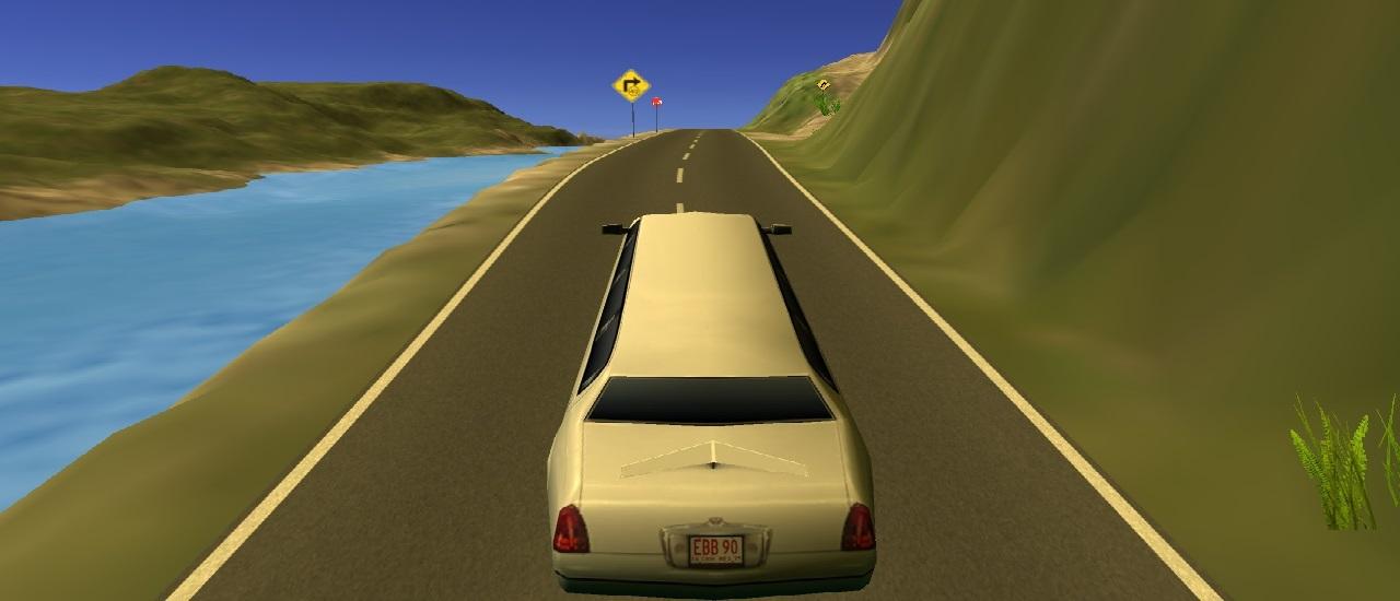 Limousine Driver