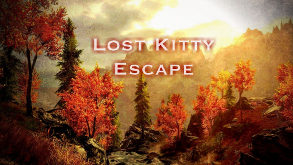 Lost Kitty Escape
