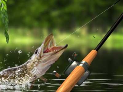 Morning catch