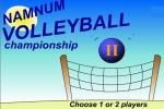Namnum Valleyball Championship