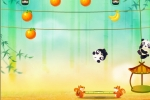 Panda Bounce Fruit Collector