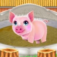 Piggy Life Mud Spa And Resort