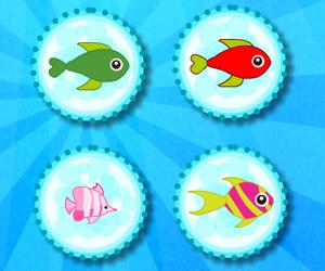 Pretty Fish Matching
