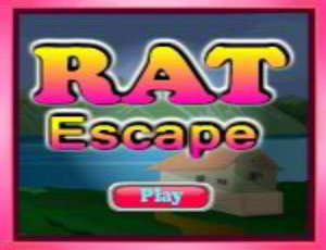 Rat Escape : Escape Games 43