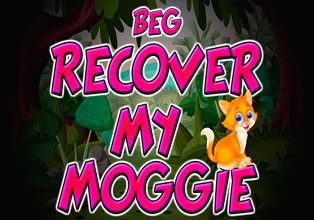 Recover My Moggie
