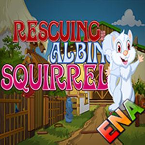 Rescuing Albino Squirrel Escape
