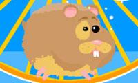 Run Run Hamster
