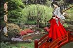 Shogunate Samurai Spirit