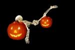 Skeleton Ragdoll