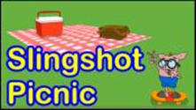 Slingshot Picnic