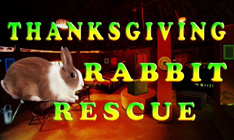Thanksgiving Rabbit Rescue
