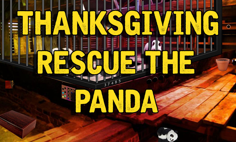 Thanksgiving Rescue The Panda