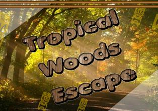 Tropical Woods Escape