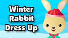 Winter Rabbit Dress Up