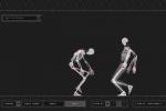 Wireframe Skeleton