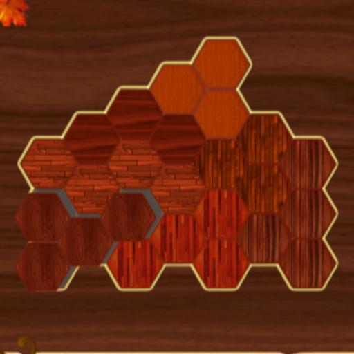 Woody Block Hexa Puzzle Game
