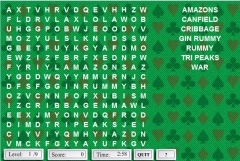 Wordsearch: Card Games