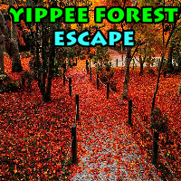 Yippee Forest Escape