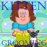 Kitten Grooming