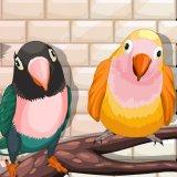 My Sweet Bird