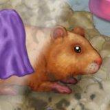 My Tiny Hamster
